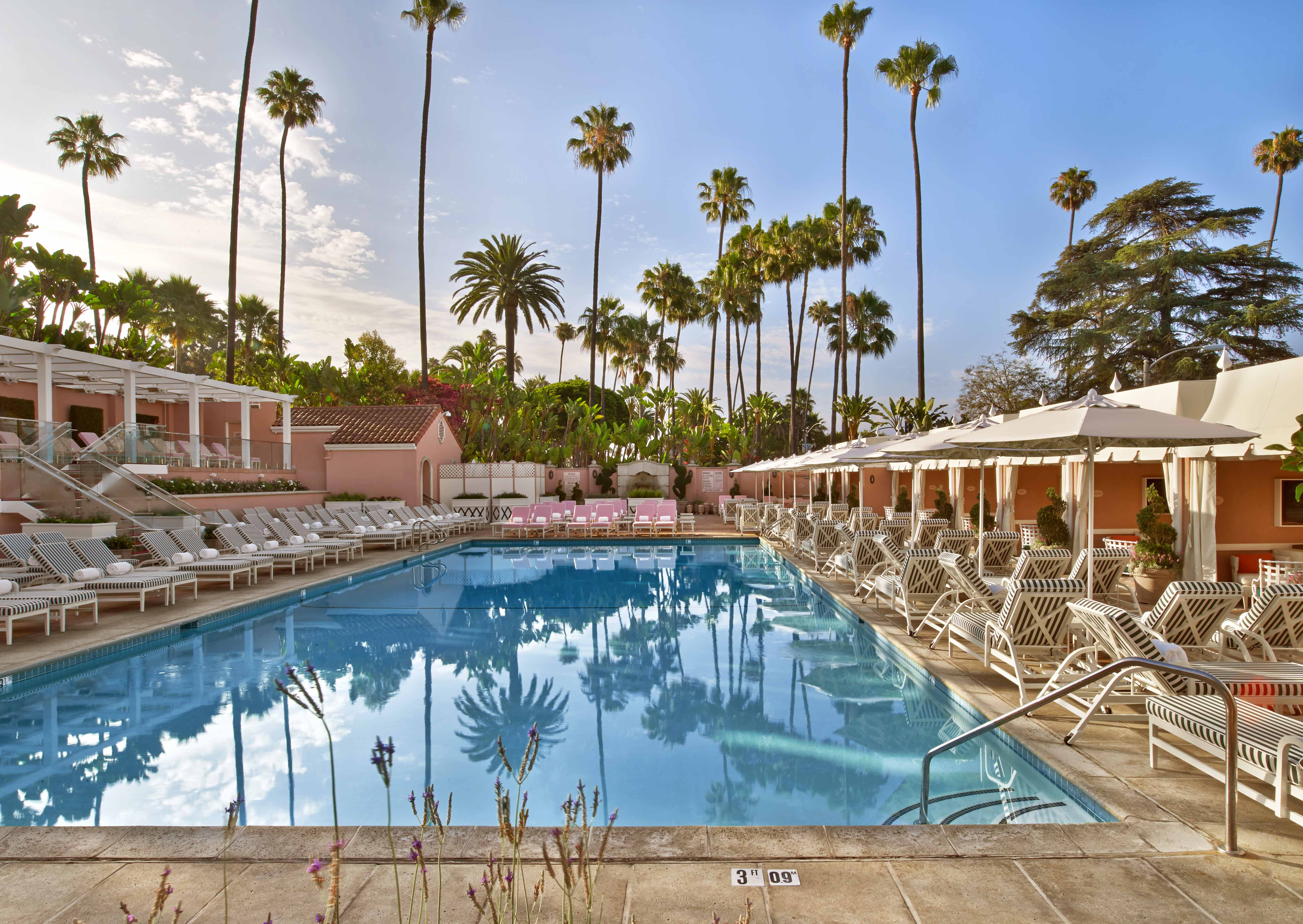 the-beverly-hills-hotel-pool