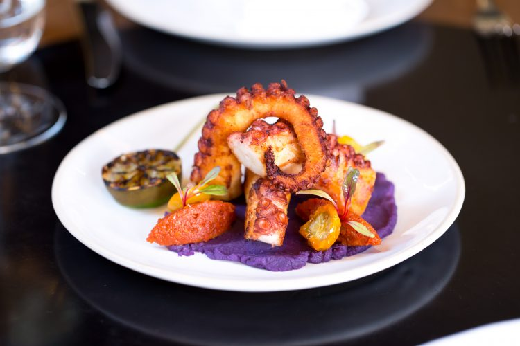 blakes-restaurant_charcoal-grill-octopus-3_jason-bailey