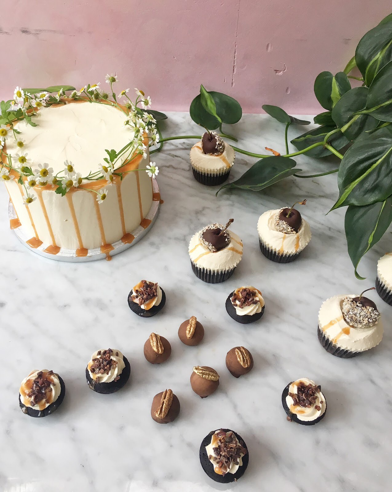 Baileys x Lily Vanilli Cake Series