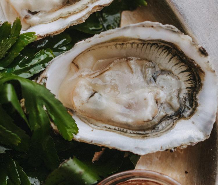 Hix Oyster Celebration 1